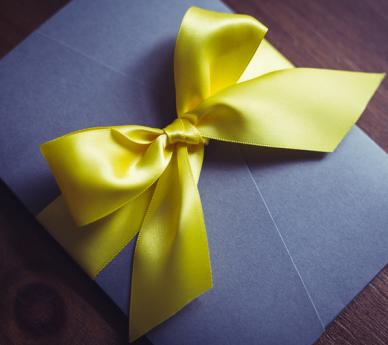 Colour Palette & Bow